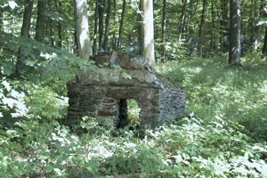 Les ruines actuelles de cages du zoo