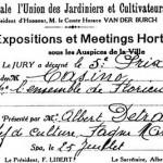 Certificats reçus par M. Detraux lors de concours aux expositions et meetings horticoles de la Société Royale l'Union des Jardiniers et Cultivateurs.