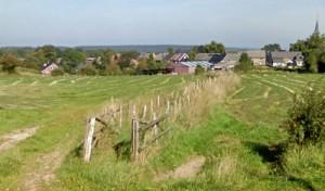 Entre les 2 prairies, le petit chemin débouche sur l'Avenue A. Guillaume. En arrière plan, le village de Creppe et son clocher, à droite