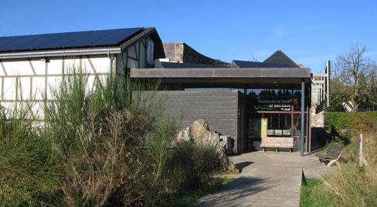 Le nouveau musée de la forêt.