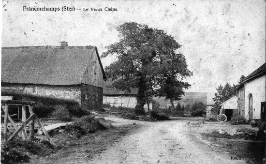 1900: Ster: le vieux chêne A gauche, la maison natale de Jean-Mathieu Nisen au centre de Ster. A l'avant-plan, à gauche, une installation de sciage de planches. Cette besogne était effectuée à la main.