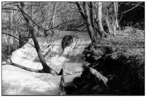 """La photo est prise du """"Preit (pré) de la Venne"""", aujourd'hui, Comptoir Franco-Belge. La vanne est visible à droite du barrage. Il reste des traces du bief supérieur et du chemin du fourneau."""
