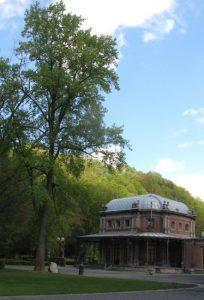 Le majestueux tulipier en aval du pavillon Marie-Henriette. Observez la hauteur impressionnante de l'arbre.